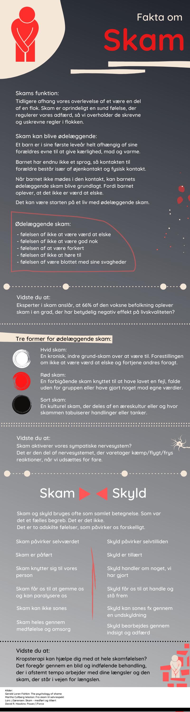infografik skam